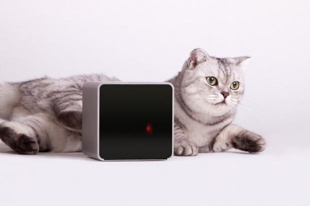 cara memantau hewan dengan smartphone