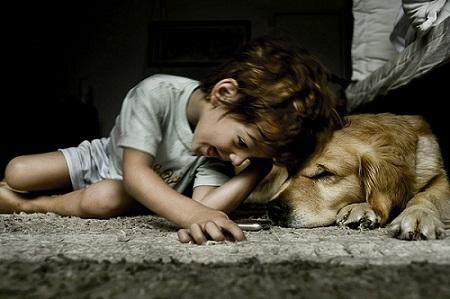 Gambar Anak dengan Binatang
