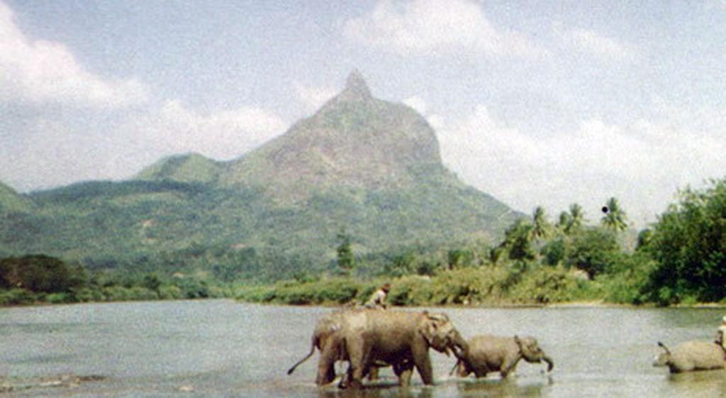 Sekolah Gajah Bukit Serelo