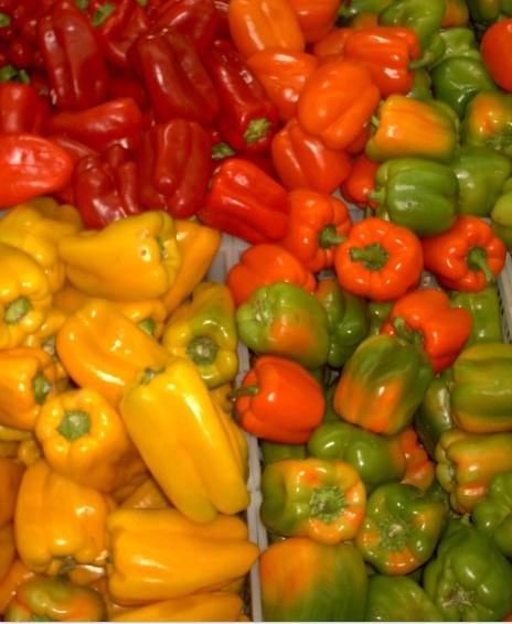 Paprika Sangat Bermanfaat untuk Kesehatan