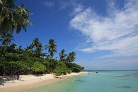 Keindahan Pantai Ujung Gelam, Karimunjawa, yang membuat Anda tercengang